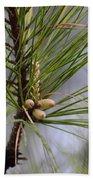 Misty Pines In Spring 2013 Beach Towel