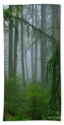 Misty Woodland Beach Towel
