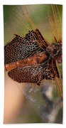 Mocha And Cream Dragonfly Profile Beach Towel