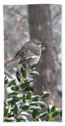 Mockingbird Cold Beach Towel