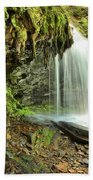 Mohawk Falls At Ricketts Glen Beach Sheet