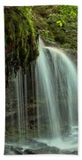 Mohawk Streams And Roots Beach Towel