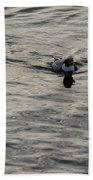 Moire Silk Water And A Long Tailed Duck Beach Towel