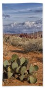 Mojave Desert Cactus Beach Towel