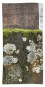 Moldy Above And Below Beach Towel by Jean Noren