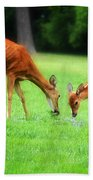 Mom Sharing A Snack With Her Baby Fawn Beach Towel
