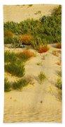 Monahans Sandhills Beach Towel