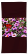 Monarch Among The Asters Beach Towel