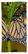 Monarch Butterflies Beach Towel