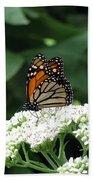 Monarch Butterfly 45 Beach Towel