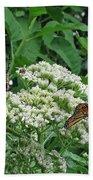 Monarch Butterfly 47 Beach Towel