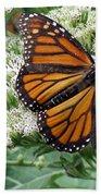 Monarch Butterfly 52 Beach Towel