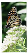 Monarch Butterfly 58 Beach Towel
