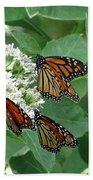 Monarch Butterfly 63 Beach Towel