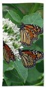 Monarch Butterfly 64 Beach Towel