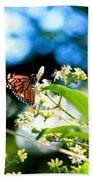 Monarch Butterfly I Beach Towel