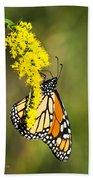 Monarch Butterfly On Goldenrod Beach Towel
