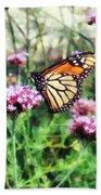 Monarch Butterfly On Pink Lantana Beach Towel