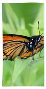 Monarch Butterfly Rocking Chair Beach Towel