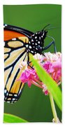 Monarch Butterfly Simple Pleasure Beach Towel