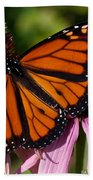 Monarch On Purple Coneflower Beach Towel