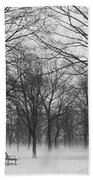 Monarch Park Ground Fog Beach Towel