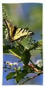 Monarch Tranquility Beach Towel