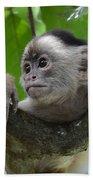 Monkey Business Beach Towel by Bob Christopher