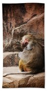 Monkey Business Beach Towel