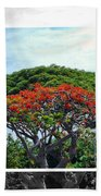 Monkey Pod Trees - Kona Hawaii Beach Towel