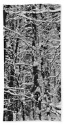 Monochrome Winter Wilderness Beach Towel