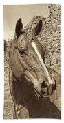 Montana Horse Portrait In Sepia Beach Towel