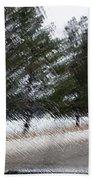 Montana Weather Report Beach Towel