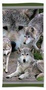 Montana Wolf Pack Beach Towel