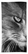 Moody Cat Beach Towel