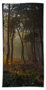Moody Forest Happy Sun Beach Towel