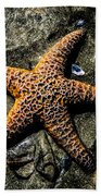 Moody Starfish II Beach Towel