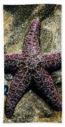 Moody Starfish IIi Beach Towel