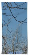 Moon On Treetop Beach Towel