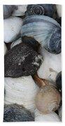 Moon Snails And Shells Still Life Beach Towel