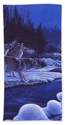 Moonlight Visitors Beach Towel