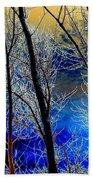 Moonlit Frosty Limbs Beach Towel