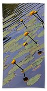 Moore State Park Lily Pads 1 Beach Towel