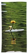 Moore State Park Lily Pond 2 Beach Towel
