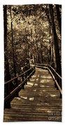 Moores Creek Battlefield Nc Swamp Walk  Beach Towel