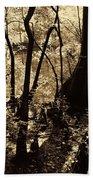 Moores Creek Swamp Beach Towel