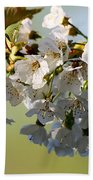 More Spring Flowers Beach Towel