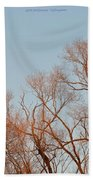 Morning Coloured In Fall Beach Towel