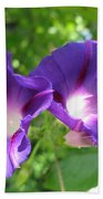 Morning Glory Couple Or 2 Purple Ipomeas Beach Towel