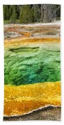 Morning Glory Pool Beach Towel
